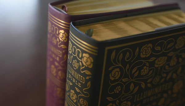 The Purposeful Beauty of the Bible • Fathom Mag