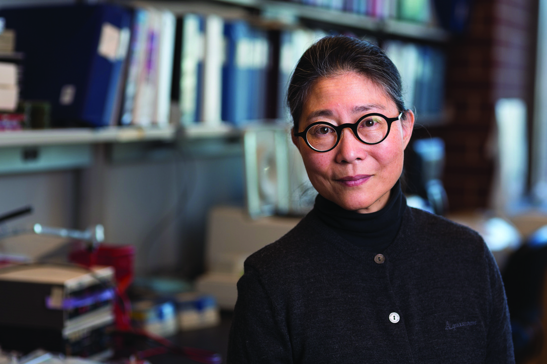 University of Minnesota neuroscientist Karen Hsiao Ashe