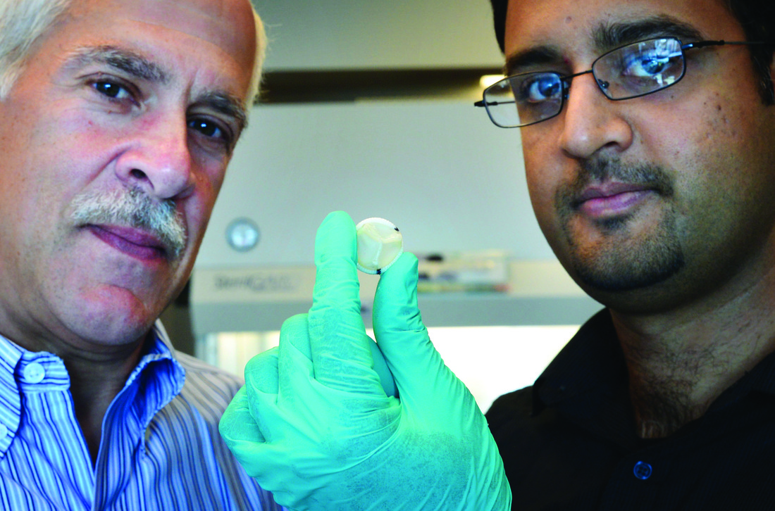 Robert Tranquillo (left) and Zeeshan Syedain with a prototype of the tissue-engineered heart valve they developed.