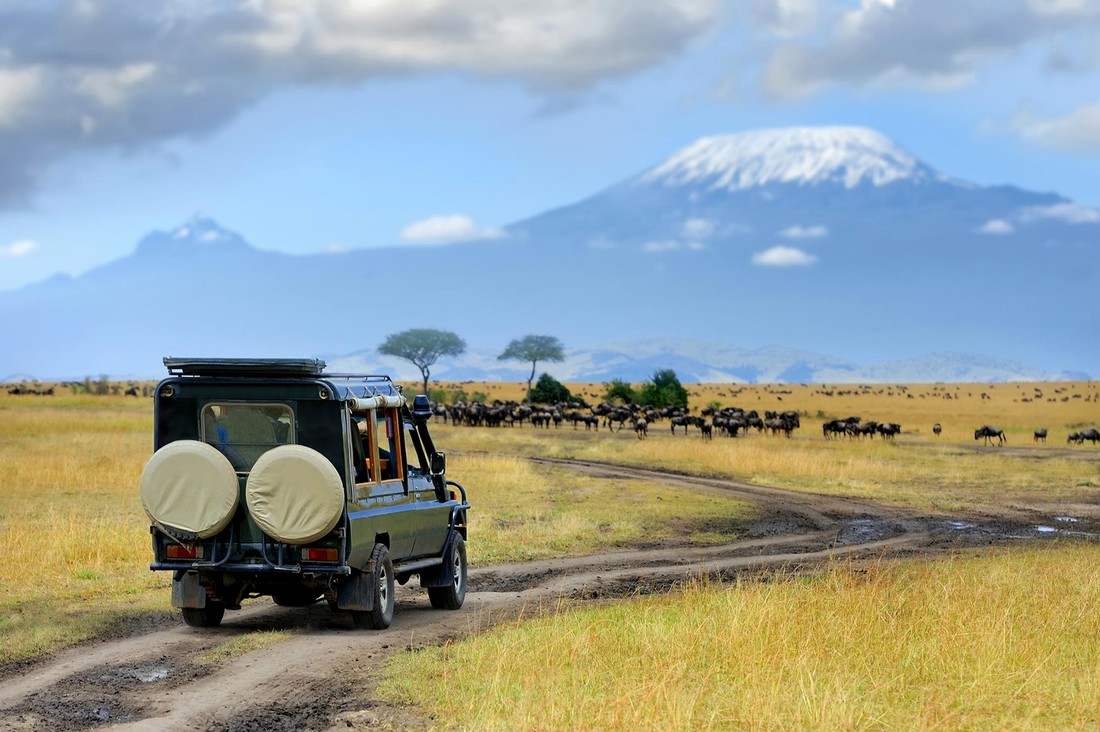 Africa's High-Tech Safaris