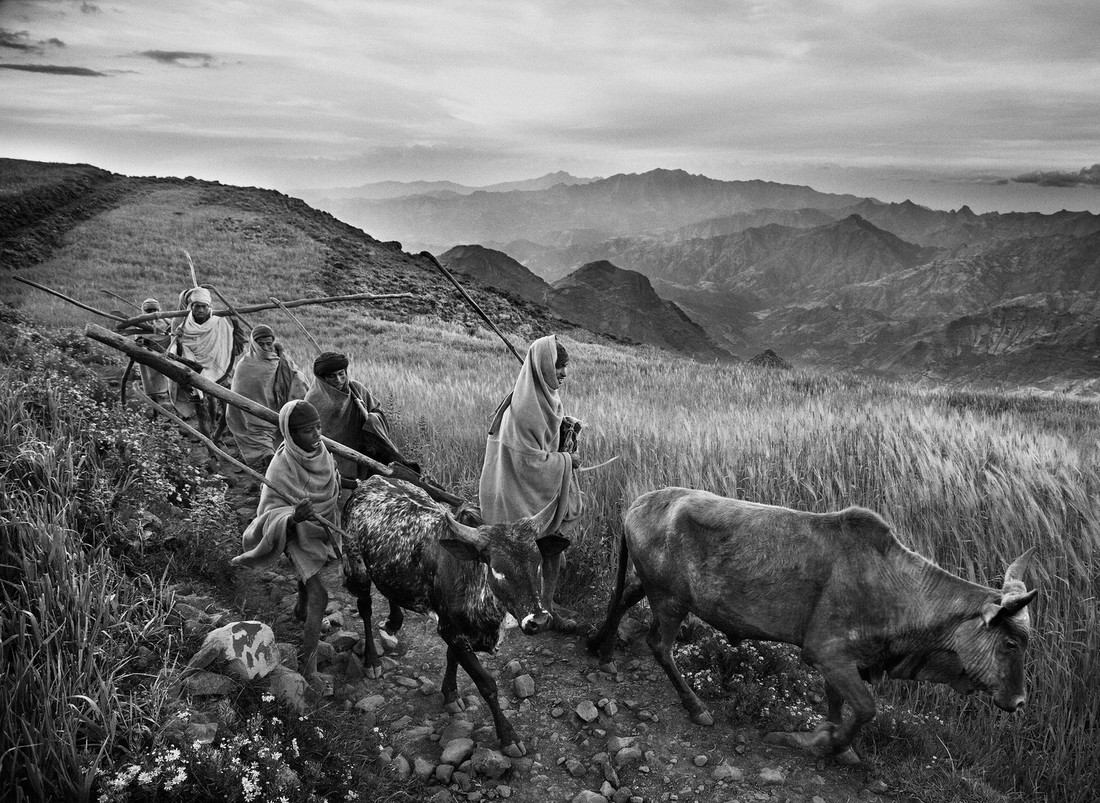 nd15_ethiopian_highlands_02.jpg