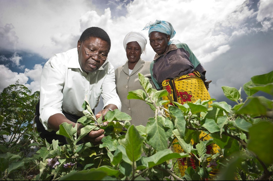 Smart Tech for Food Security